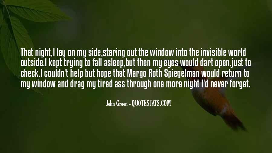 Staring Into Her Eyes Quotes #228319