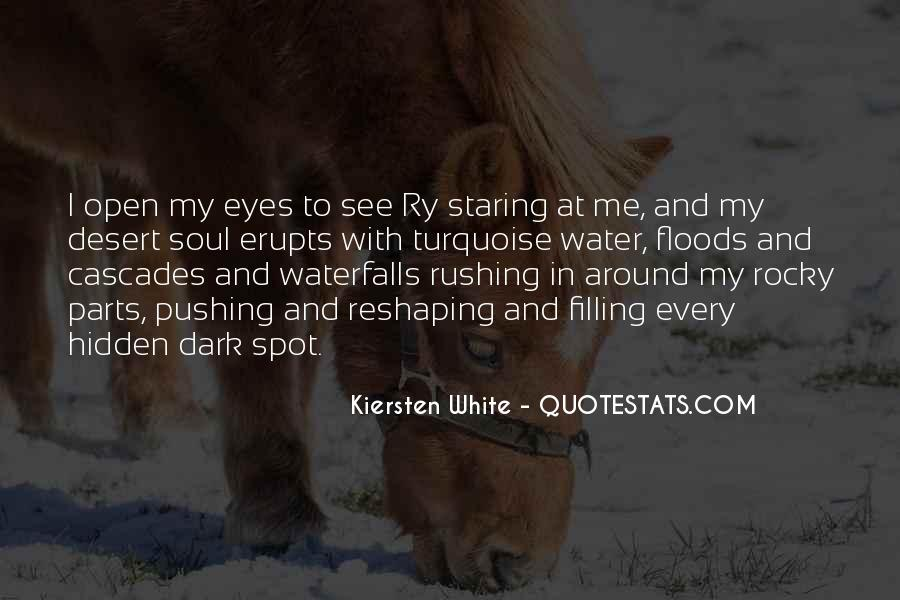 Staring Into Her Eyes Quotes #443223