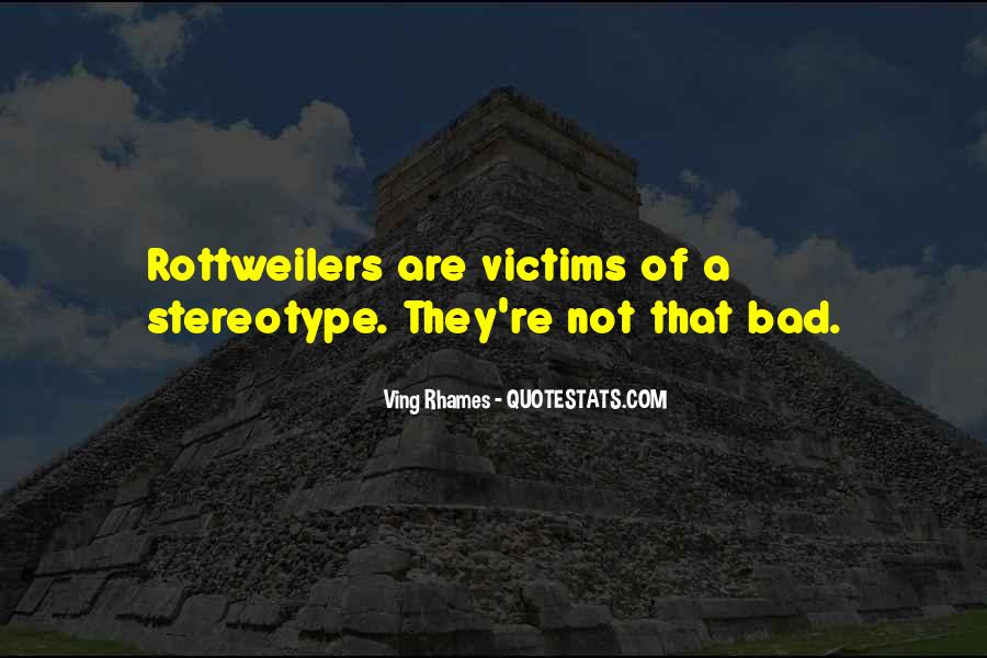 Stereotype Quotes #680809