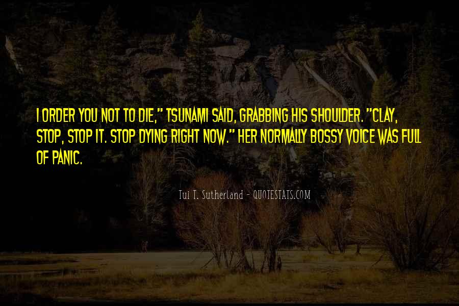 Stop Following Others Quotes #12034