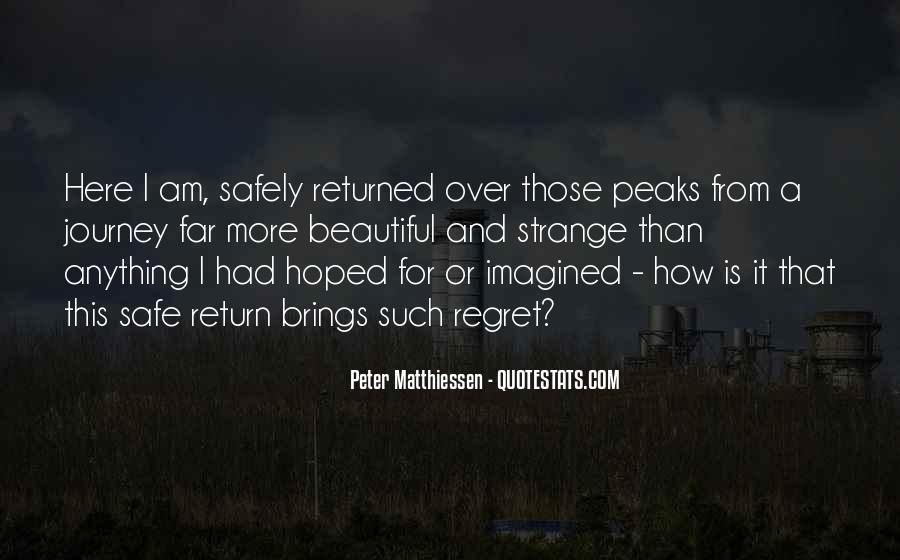 Strange But Beautiful Quotes #1034922