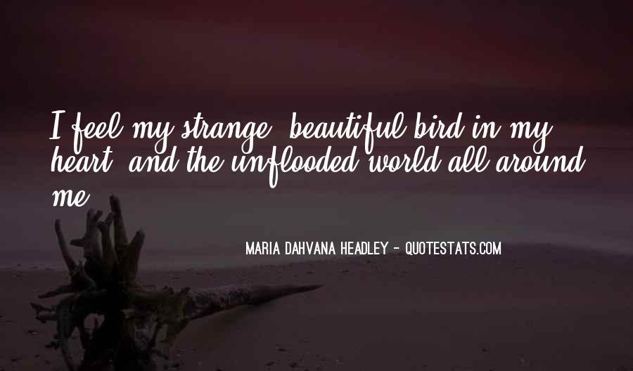 Strange But Beautiful Quotes #238314