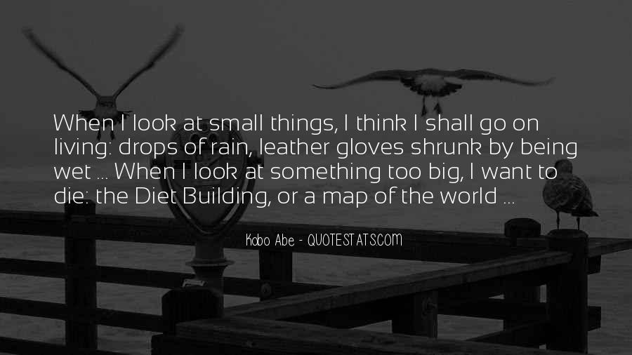 Quotes About Abe #324454