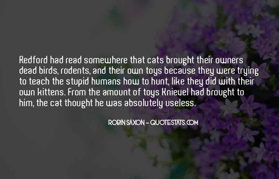 Stupid And Funny Quotes #1714221