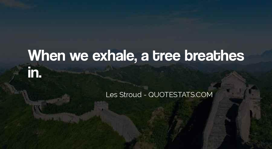 Quotes About Stroud #987400