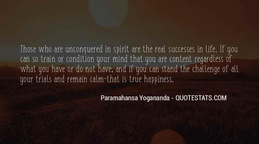 Successes Quotes #331151