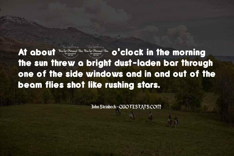 Sun Beam Quotes #1379136