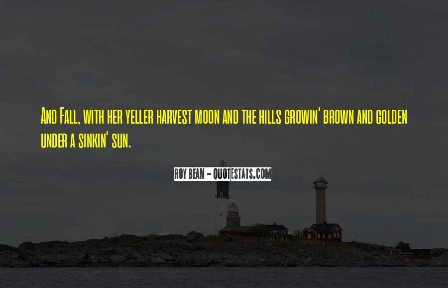 Sun Fall Quotes #1484130