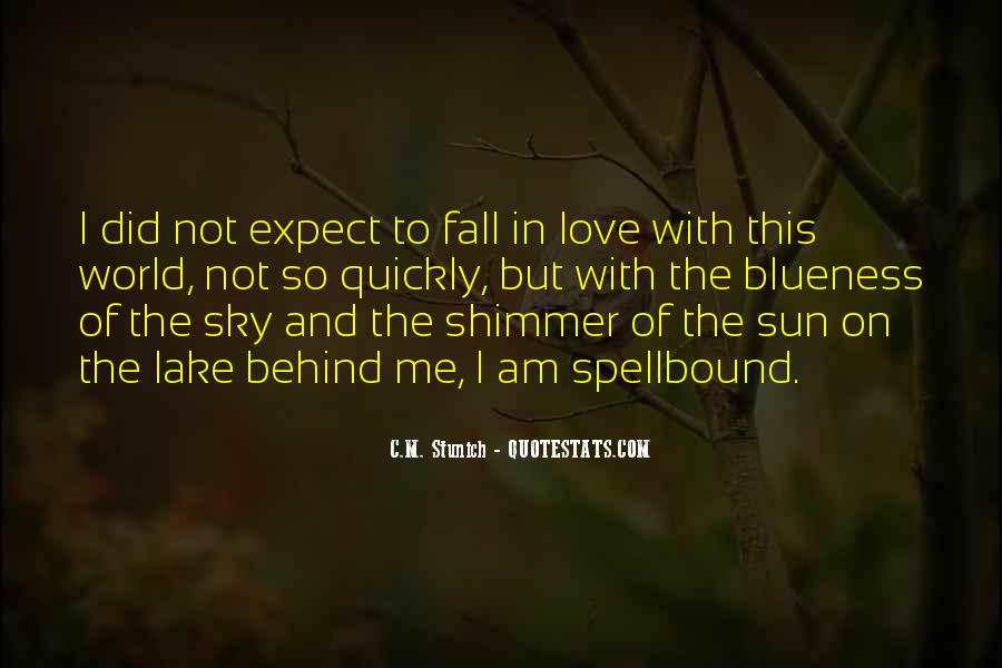 Sun Fall Quotes #760288