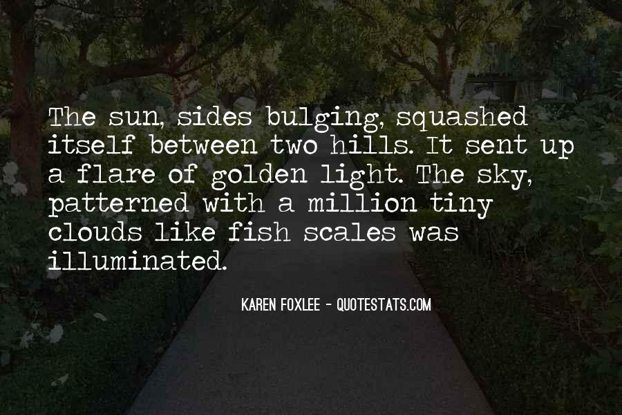 Sun Flare Quotes #77031