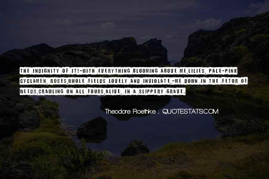 Sussurro Livro Quotes #295890