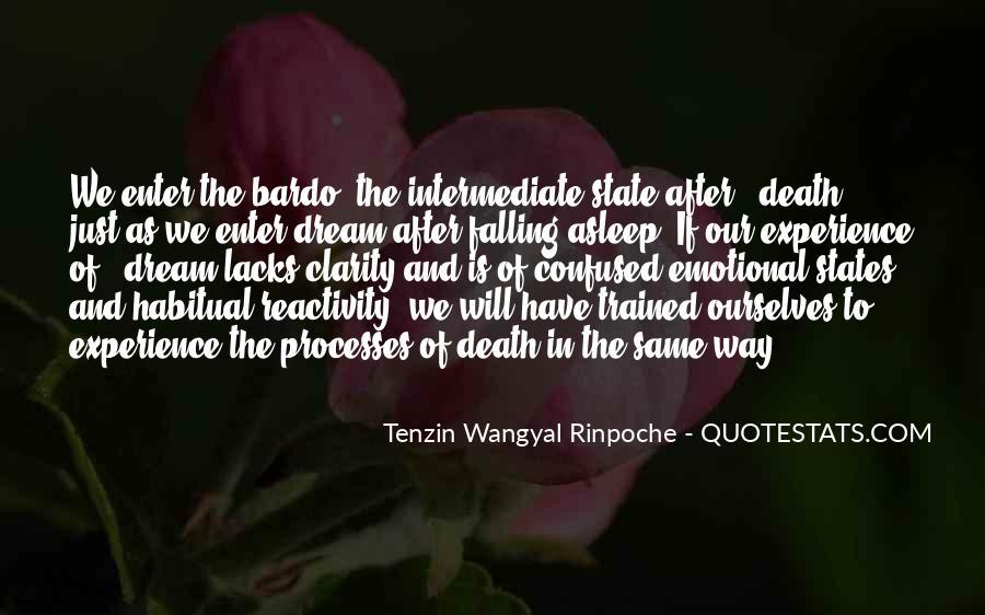 Tenzin Rinpoche Quotes #130908