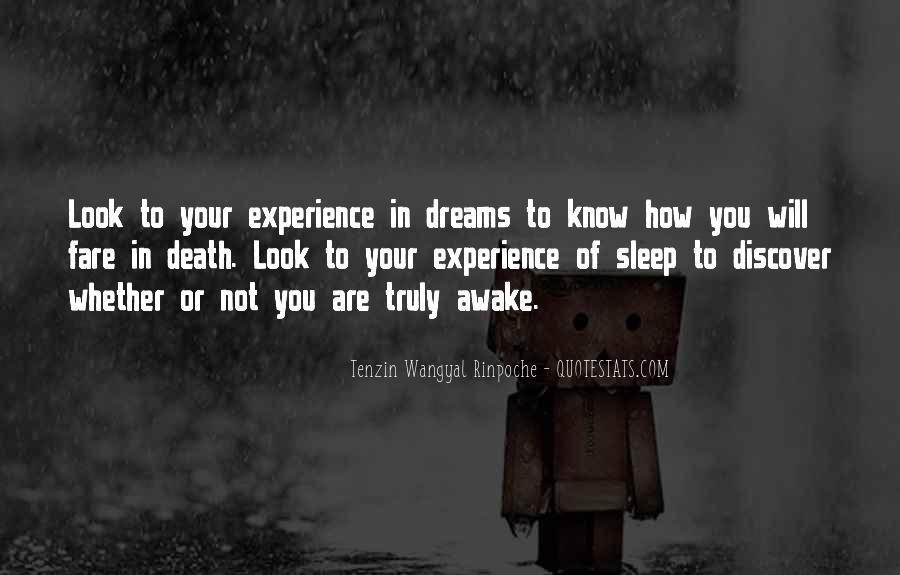 Tenzin Rinpoche Quotes #675446