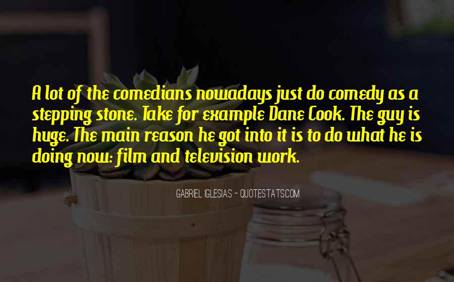 Quotes About Gabriel Iglesias #545411