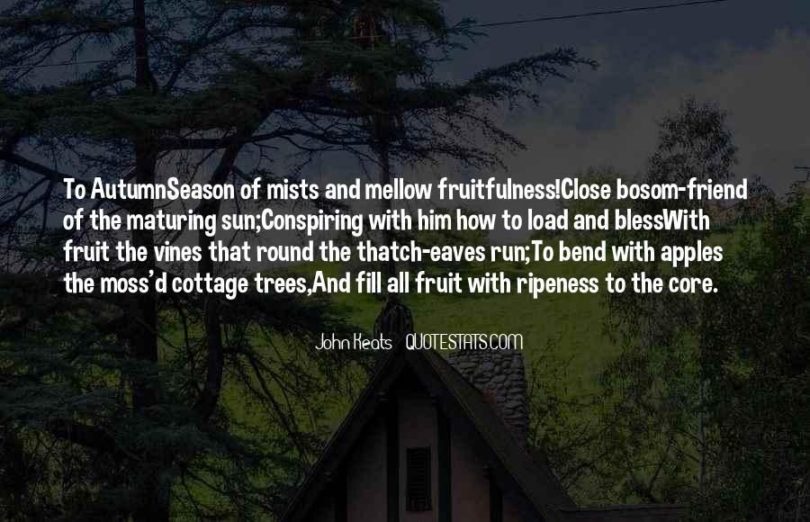 Thatch Quotes #471072