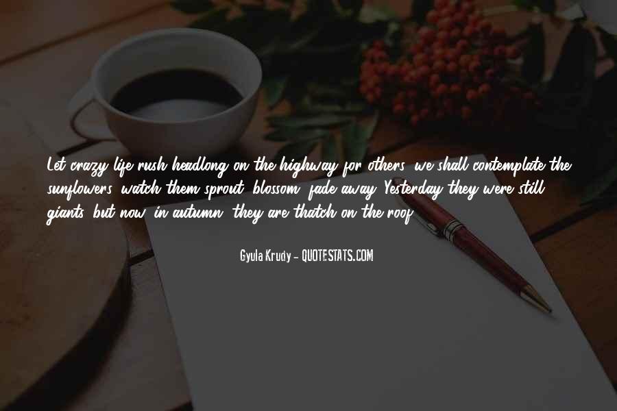 Thatch Quotes #54424