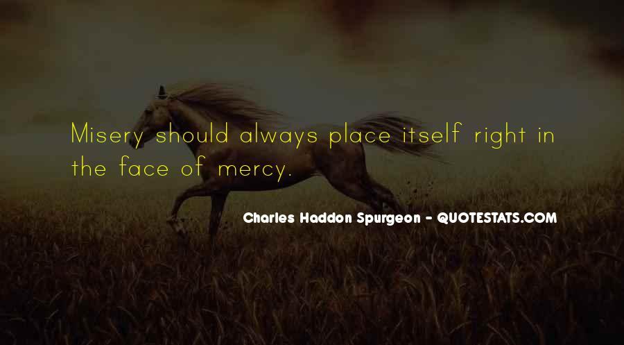 The Apology Insufficiency Quotes #1180994