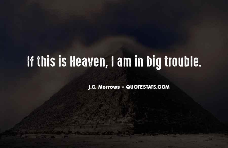 The Big C Quotes #282568