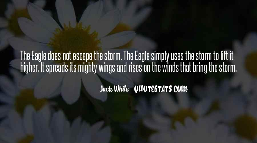 The Mighty Wind Quotes #421842