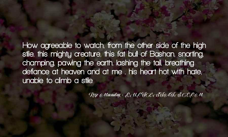 The Other Side Of Heaven Quotes #699463