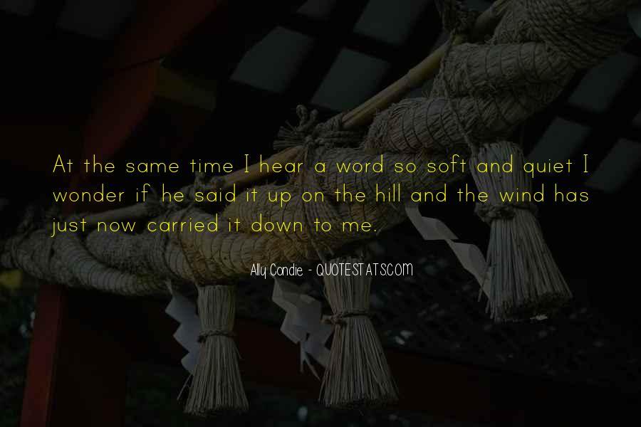 The Quiet Man Quotes #20409