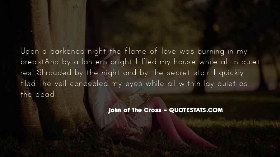 The Secret Love Quotes #422536