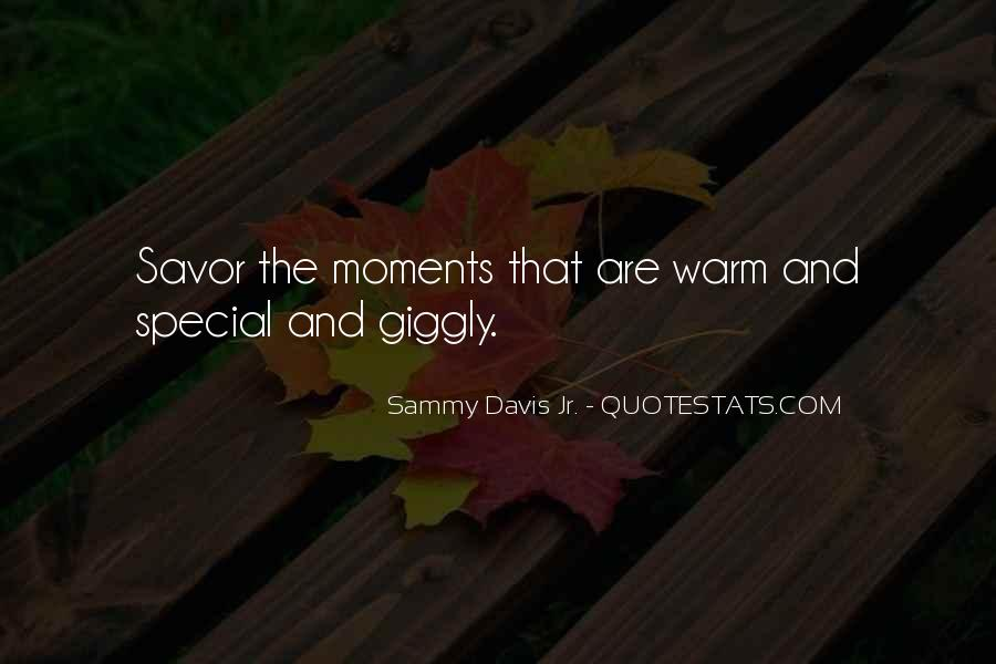 The Special Moments Quotes #945365