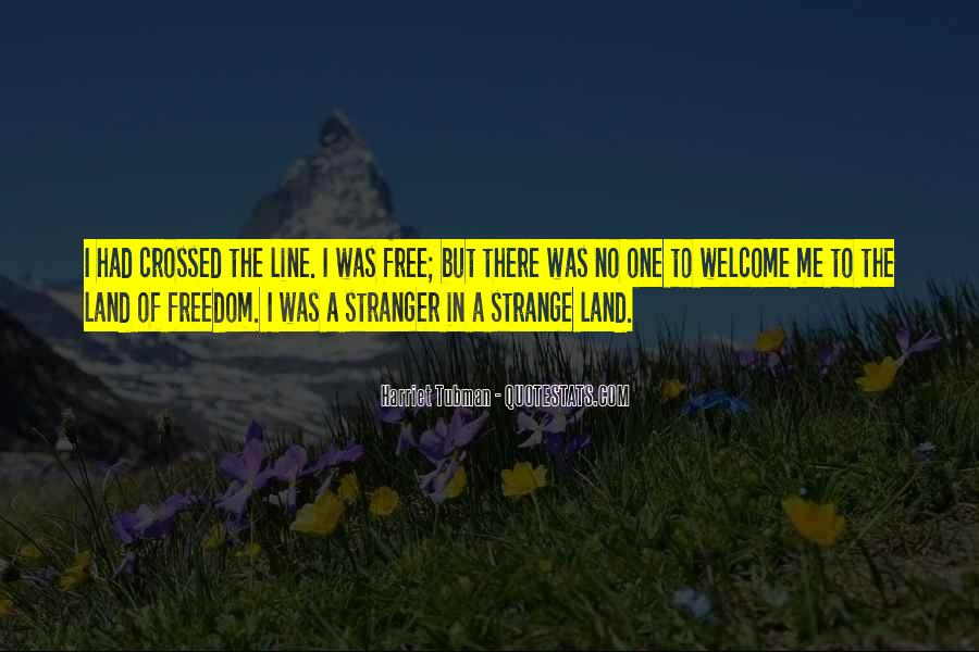 The Stranger Quotes #93528