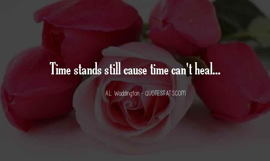 The Time Will Heal Quotes #472547