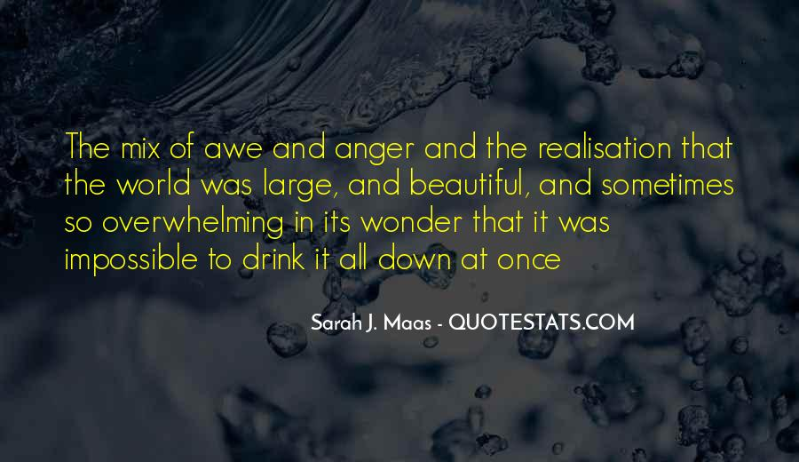 The Wonder Of It All Quotes #778830