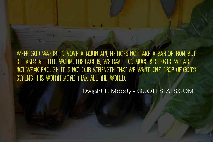 The World Is Not Enough Quotes #318774