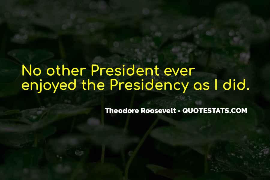 Theodore Roosevelt Presidency Quotes #185711