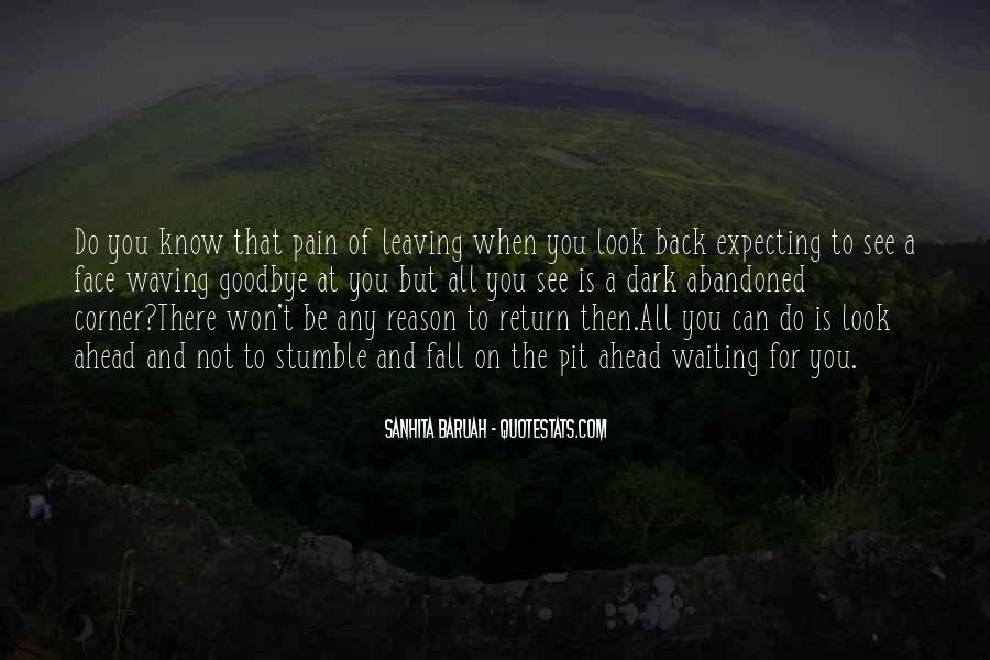 There's No Reason To Look Back Quotes #186104