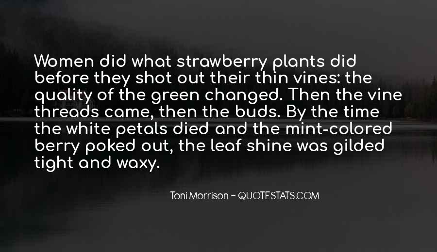 Thin Mint Quotes #1785787