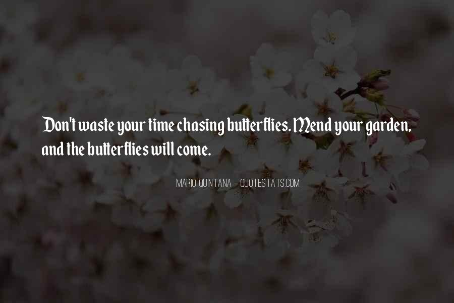 Time Of Butterflies Quotes #68643