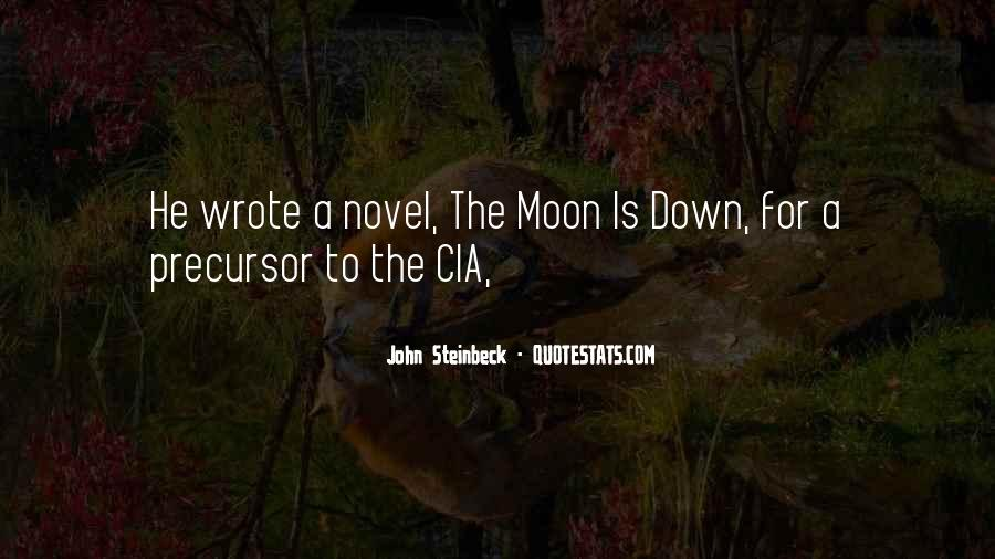 To The Moon Quotes #55299
