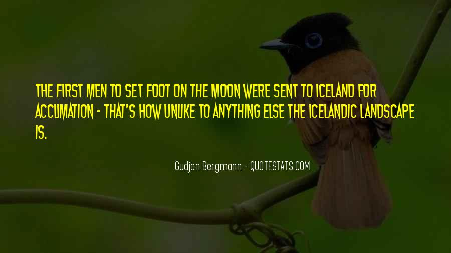 To The Moon Quotes #63614