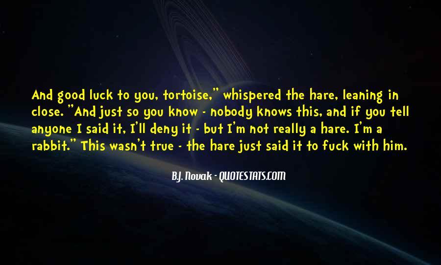 Tortoise Hare Quotes #1550225