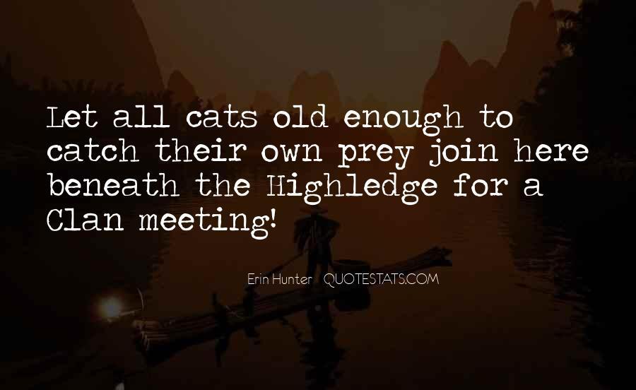 Travelers Stock Quotes #1824341