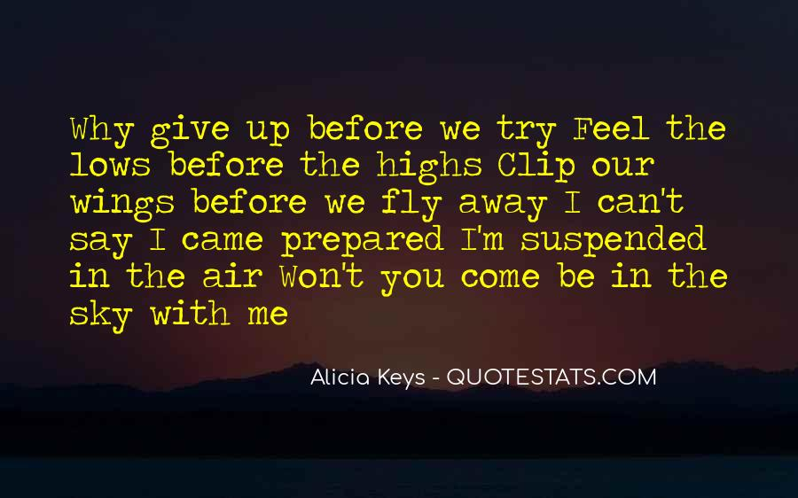 Try Before You Give Up Quotes #756466