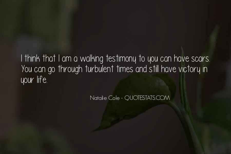 Turbulent Life Quotes #145106