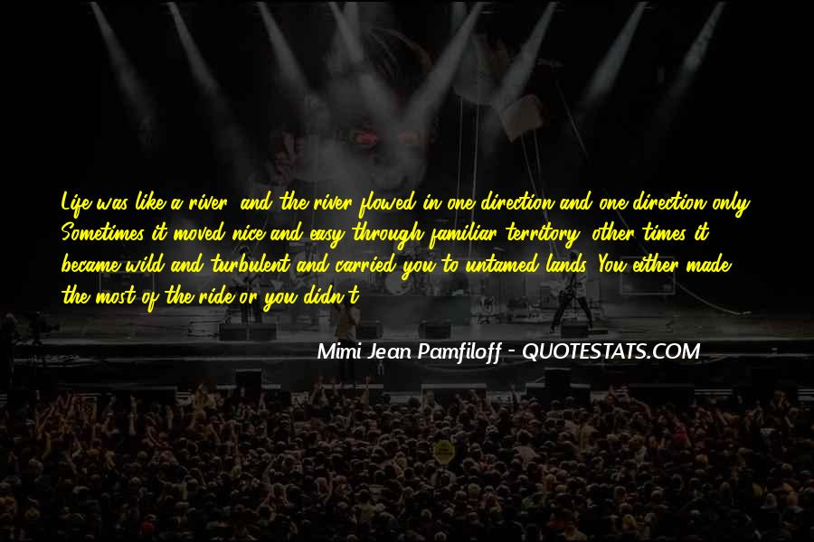 Turbulent Life Quotes #585809