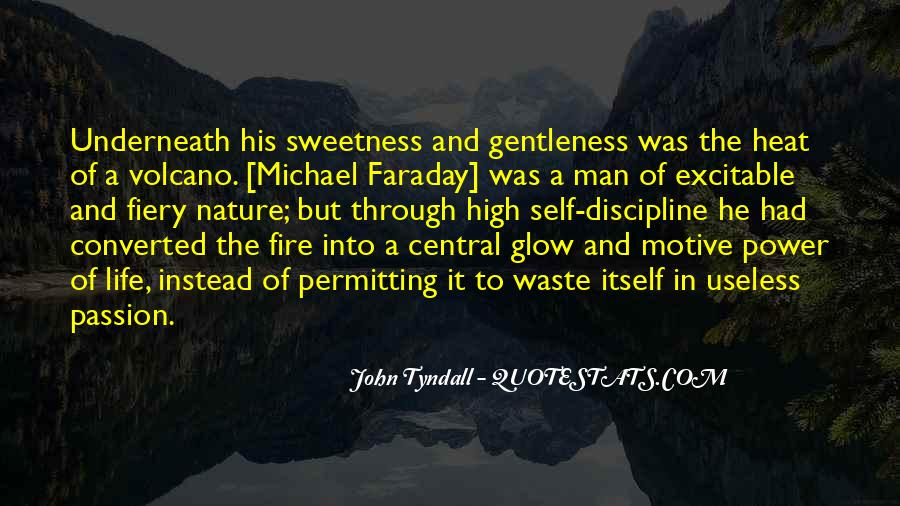 Tyndall Quotes #750035