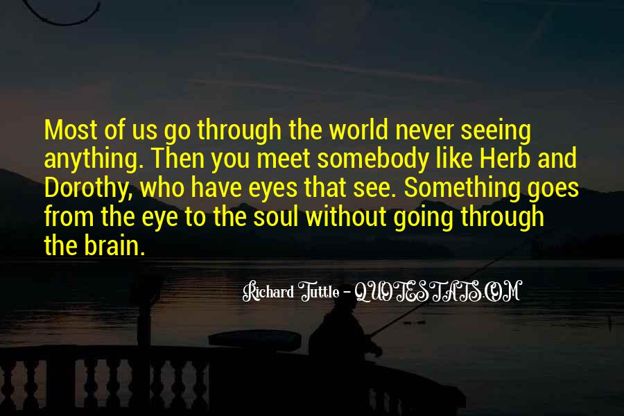 Quotes About Seeing Things Through Others Eyes #224949