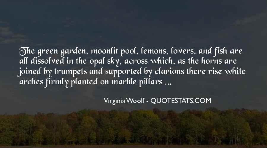Under The Moonlit Sky Quotes #613729
