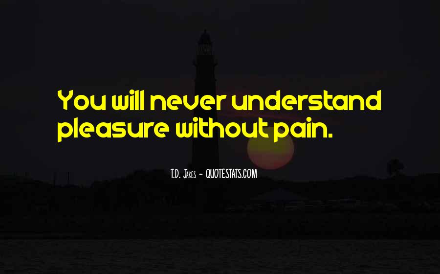 Understand Others Pain Quotes #317394