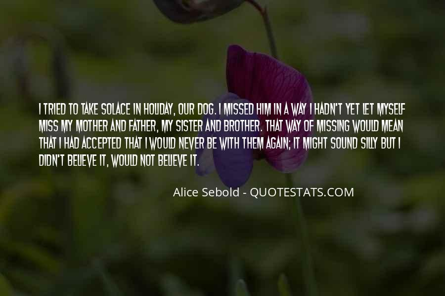Quotes About A Sister Missing Her Brother #659981