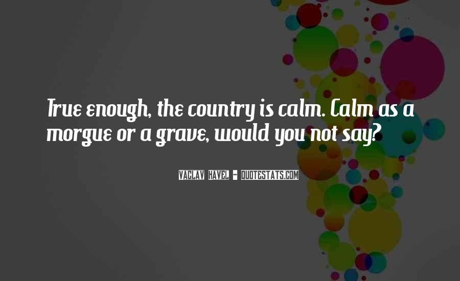 Vaclav Havel's Quotes #118070