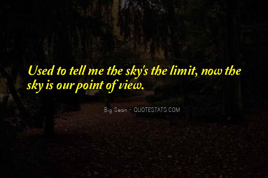 View From The Sky Quotes #650814