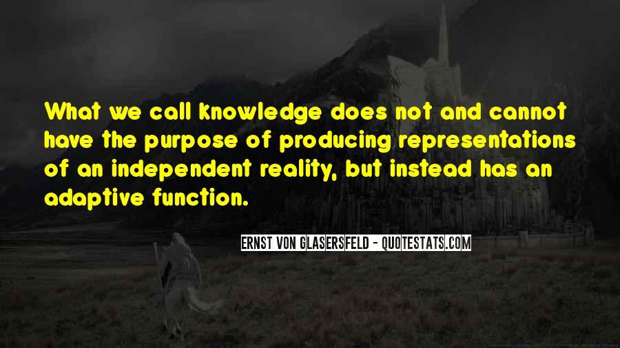 Von Glasersfeld Quotes #795220